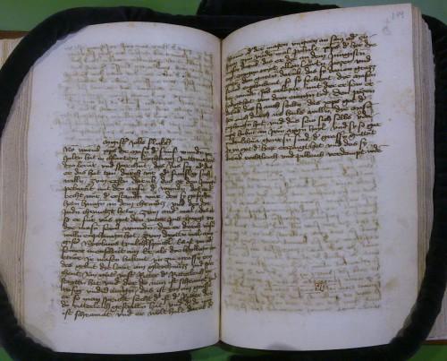Cod. 306 (Hübl 306), fol. 113v/114r