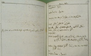 Cod. 546 (Hübl 631), fol. 153v/154r