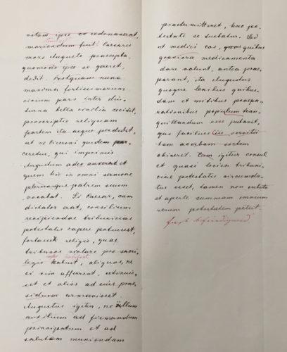 Schriftliche Maturaarbeit (deutsch-lateinisch) von Karl Hübl (1885)