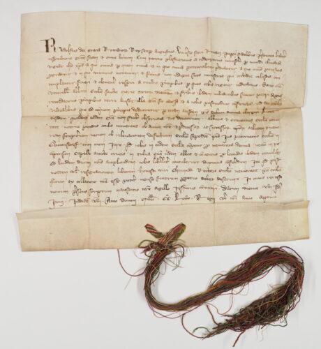 Urk 1280-06-06. Urkunde König Rudolfs I. vom 6. Juni 1280; in der 12. Zeile Nennung des Ortes Gaunenstorf.